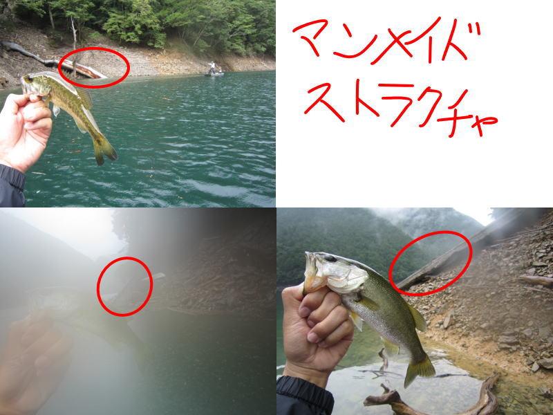 20120812ikehara.jpg
