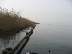 木の浜090222
